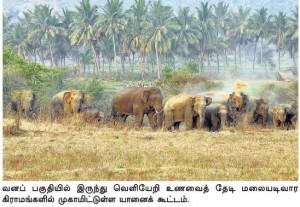 Courtesy: Hindu